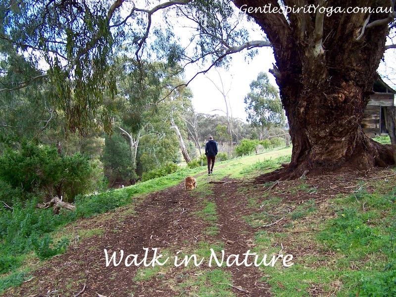 Gentle Spirit Yoga ~ Walking Meditation
