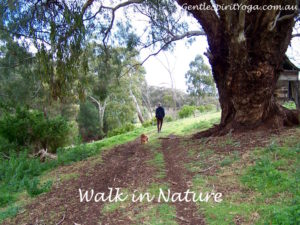 Gentle Spirit Yoga ~ Walking Meditation